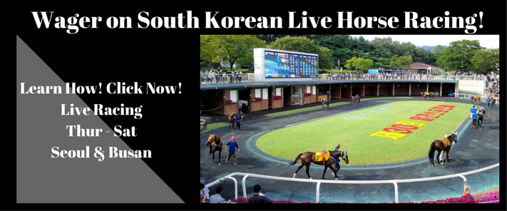 South Korean Live Horse Racing Banner Ad